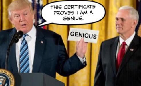 genious certificate.jpg