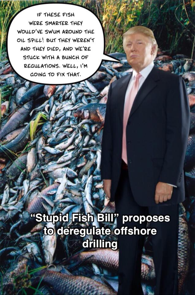 stupid fish.jpg